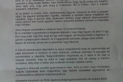 csaba_testver_level